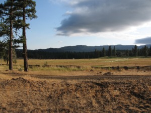 Sunriver meadow